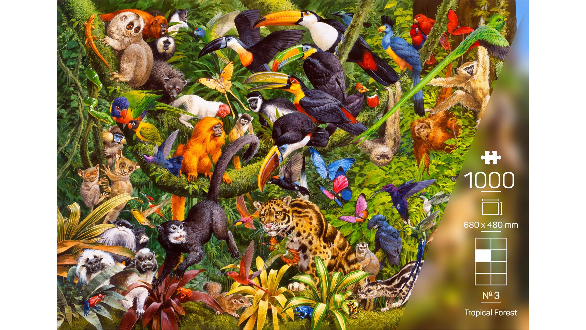 The Wildlife Collection – Nr. 3 Tropical Forest